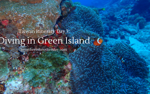 Diving in Green Island