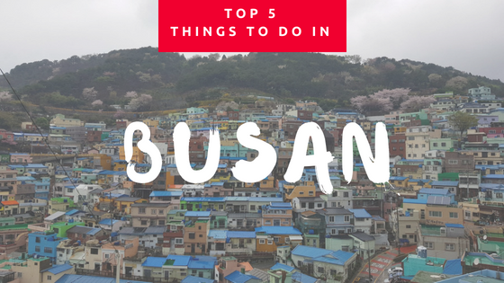Things to do in busan